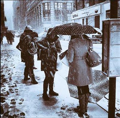 Snowflake Umbrella @CarianneHix