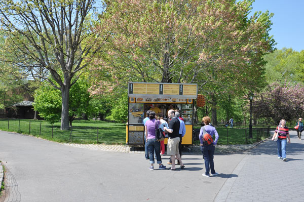 What Central Park looked like today