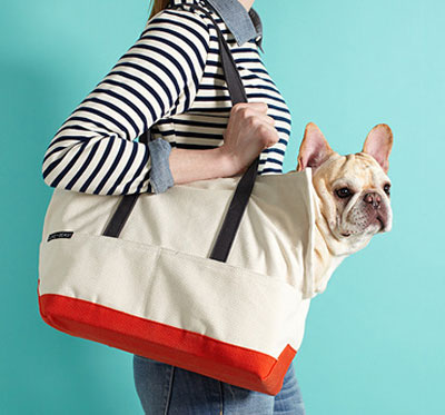 Starting at 9PM at Gilt.com: Pet Style - LoveThyBeast & P.L.A.Y.