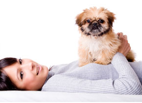 Lose the stress and kick your bad habits with the help of man's best friend