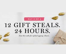 12 gift steals. 24 hours. Day 2 of 4. Online Sample Sale @ Ruelala.com