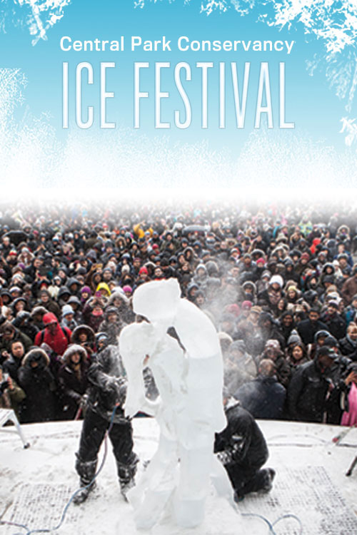Ice Festival at Central Park
